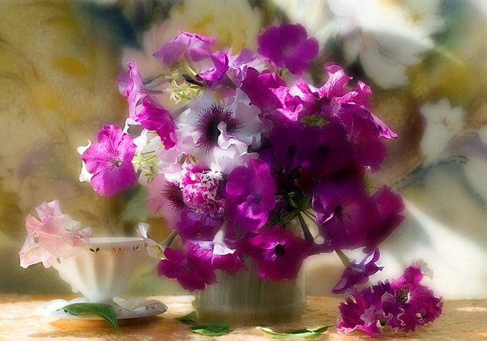 http://img0.liveinternet.ru/images/attach/c/2//64/890/64890985_1662379.jpg