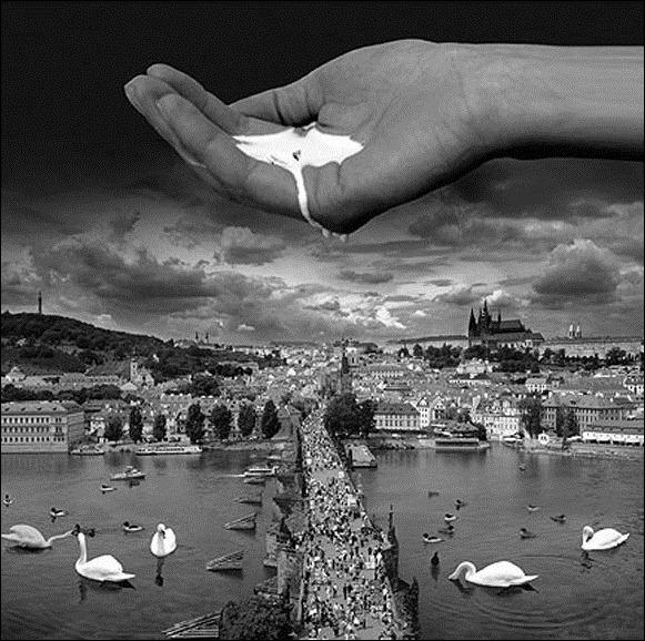 Волшебный мир фотохудожника Thomas Barbey 45