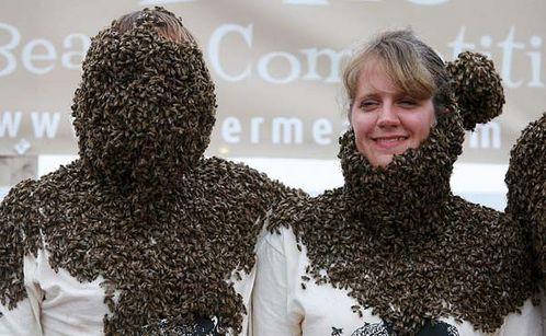 Конкурс лучшей «бороды» из пчел прошел в Канаде 10611