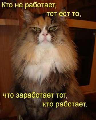 http://img0.liveinternet.ru/images/attach/c/2//65/385/65385900_1287250850_yc23u.jpg