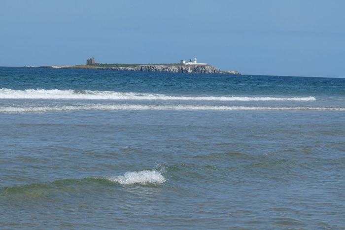 Farne Islands 58788