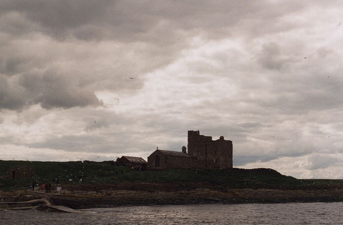 Farne Islands 94104