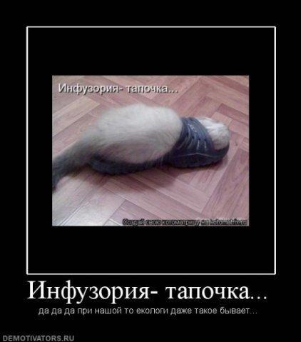 http://img0.liveinternet.ru/images/attach/c/2//65/414/65414276_d5c409a4177d.jpg