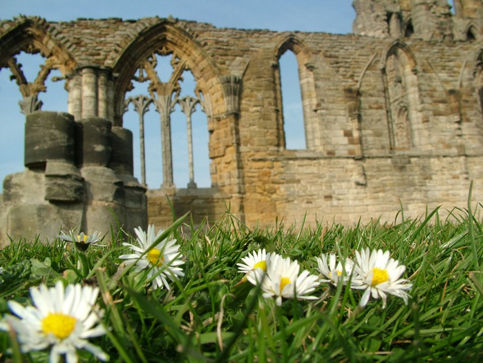 Аббатство Уитби - Whitby Abbey 59027