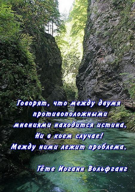 (452x639, 368Kb)