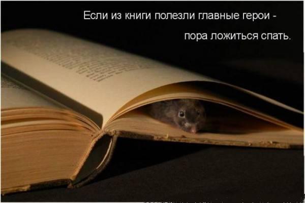 http://img0.liveinternet.ru/images/attach/c/2//65/647/65647512_1287778403_Risunok1.jpg