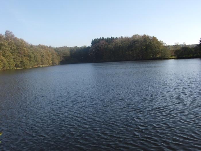 Осенний денёк на озере в Лангенау, Саксония 67378