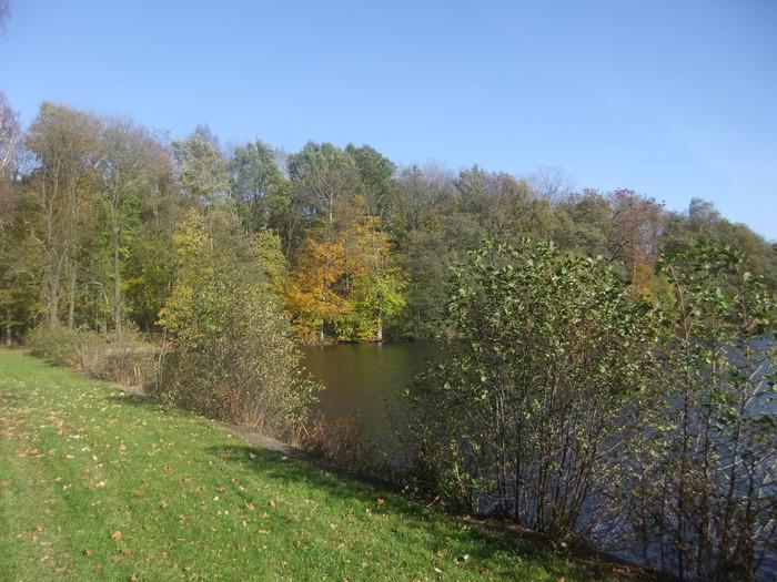 Осенний денёк на озере в Лангенау, Саксония 69492