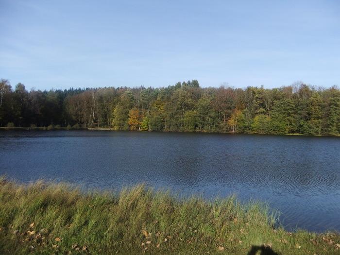 Осенний денёк на озере в Лангенау, Саксония 60326