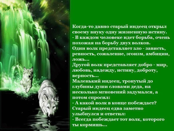 http://img0.liveinternet.ru/images/attach/c/2//65/746/65746068_1287998903_Pritcha_o_dushe_i_dvuh_volkah.jpg