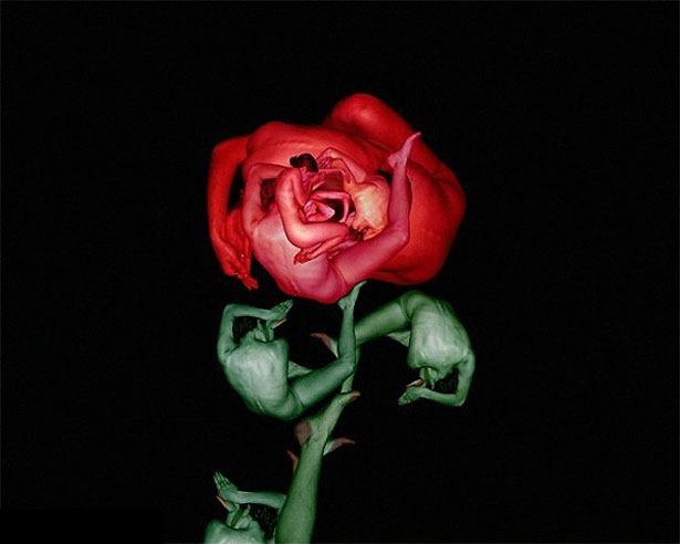 Креативные цветы из людей 6