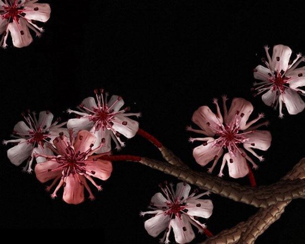 Креативные цветы из людей 12