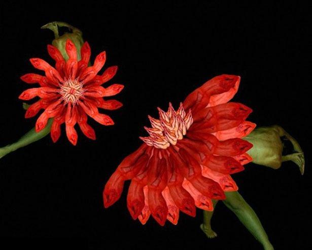 Креативные цветы из людей 15