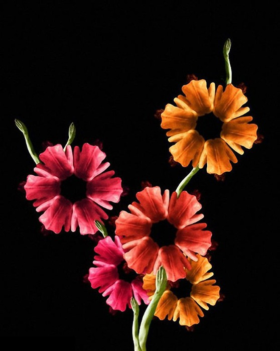 Креативные цветы из людей 20