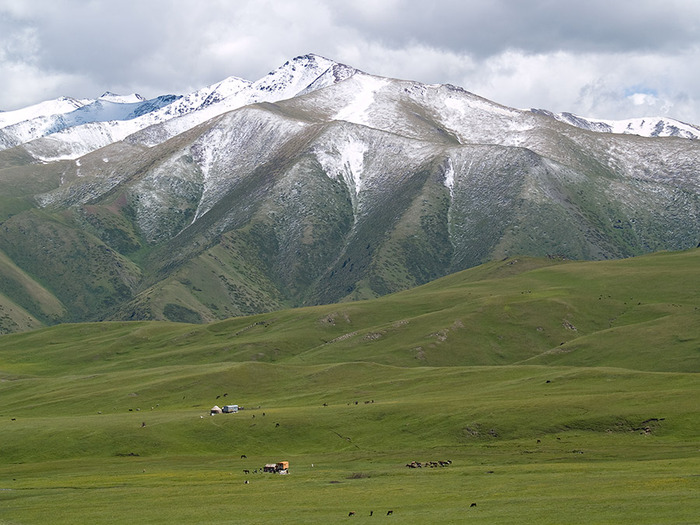 Киргизия-Фотозарисовки. 10235