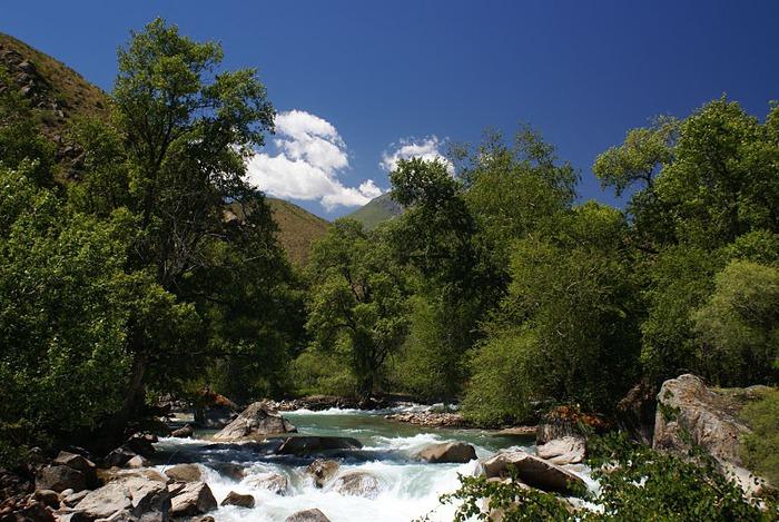 Киргизия-Фотозарисовки. 46435