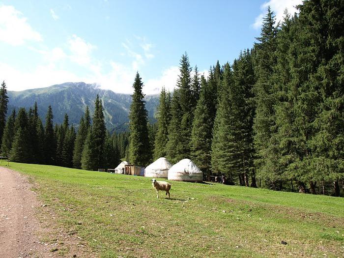 Киргизия-Фотозарисовки. 38177