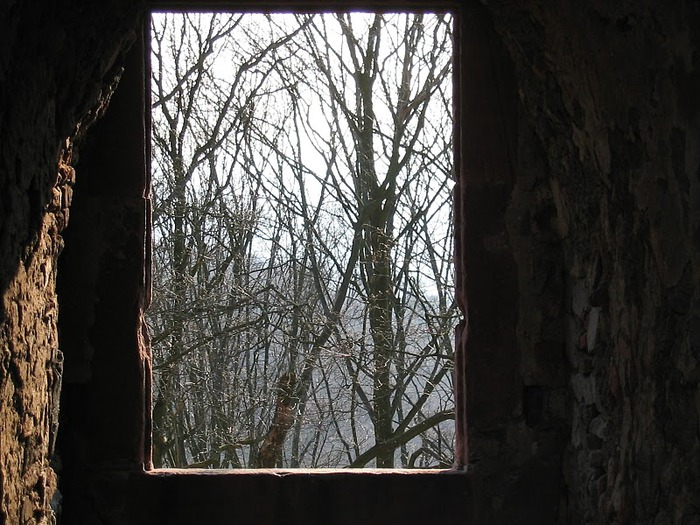 В гости к Франкенштейну- Burg Frankenstein 50734