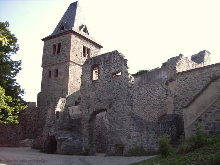 В гости к Франкенштейну- Burg Frankenstein 90543