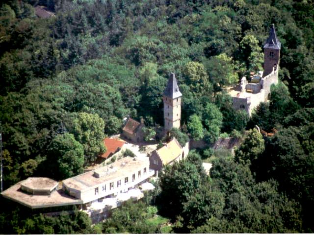 В гости к Франкенштейну- Burg Frankenstein 88381