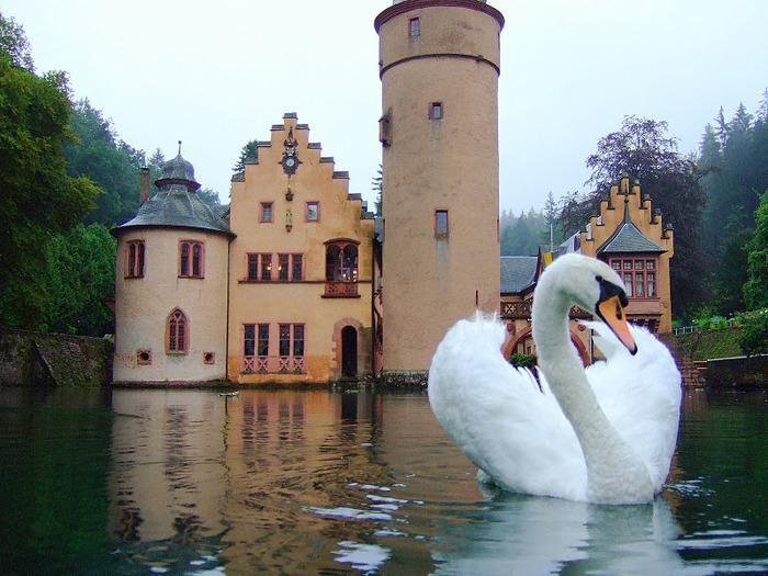 Замок Mespelbrunn. 46673