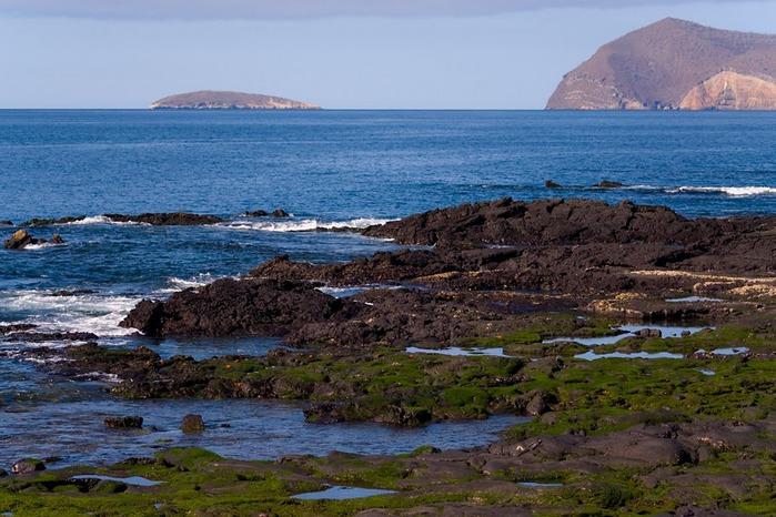 Галапагосские острова 15857