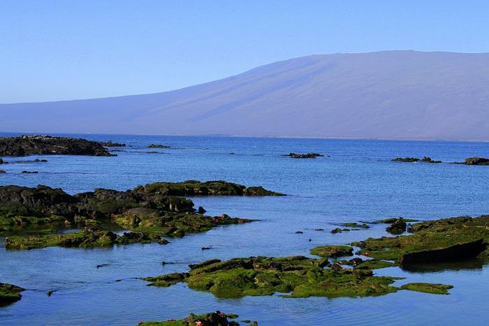 Галапагосские острова 59401