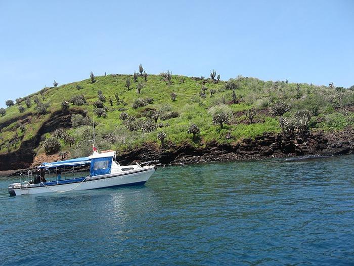 Галапагосские острова 59625