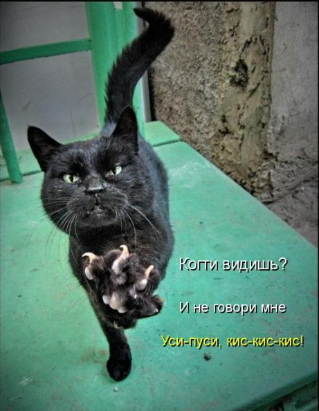 http://img0.liveinternet.ru/images/attach/c/2//66/254/66254957_002.jpg