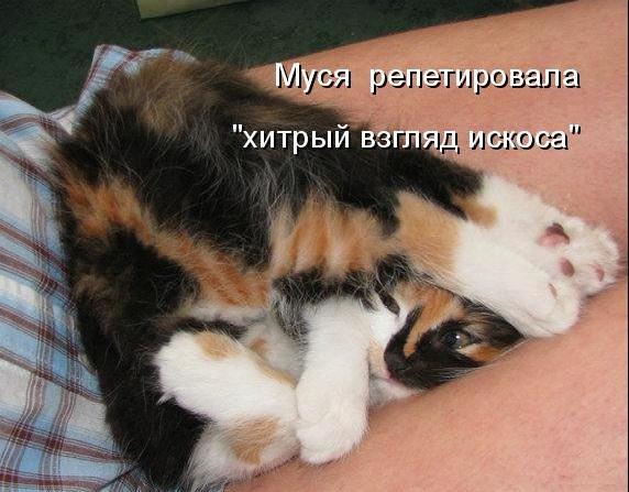 http://img0.liveinternet.ru/images/attach/c/2//66/255/66255037_004.jpg