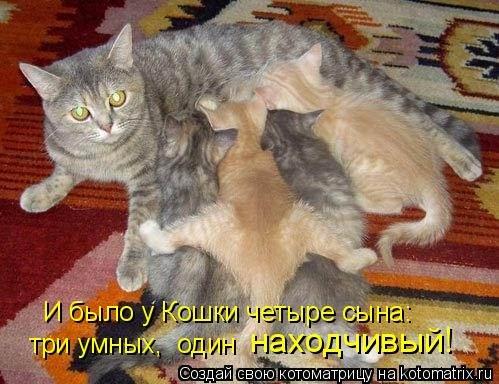 http://img0.liveinternet.ru/images/attach/c/2//66/414/66414473_5a9feee4bd3d.jpg