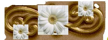 Элементы декора - Страница 8 66499852_61810953_1279762053_22502951