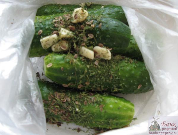 047b_cucumber (600x456, 90 Kb)