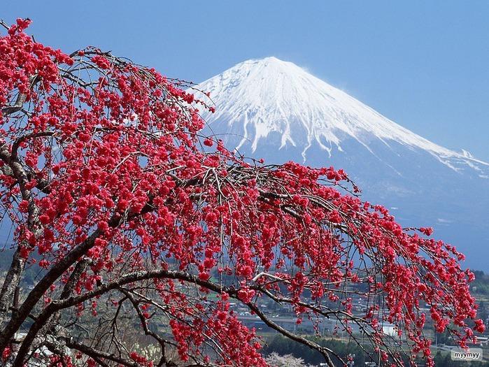 Величественный символ Японии - гора Фудзи 47