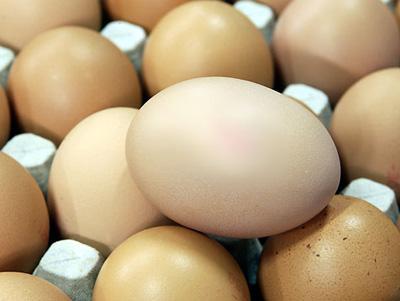 20090429-eier (400x301, 60 Kb)