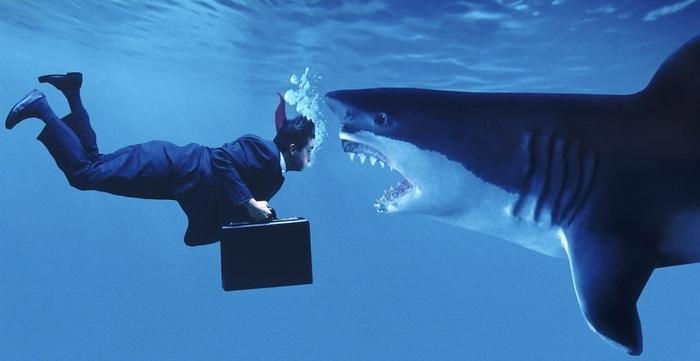 как стать акулой бизнеса