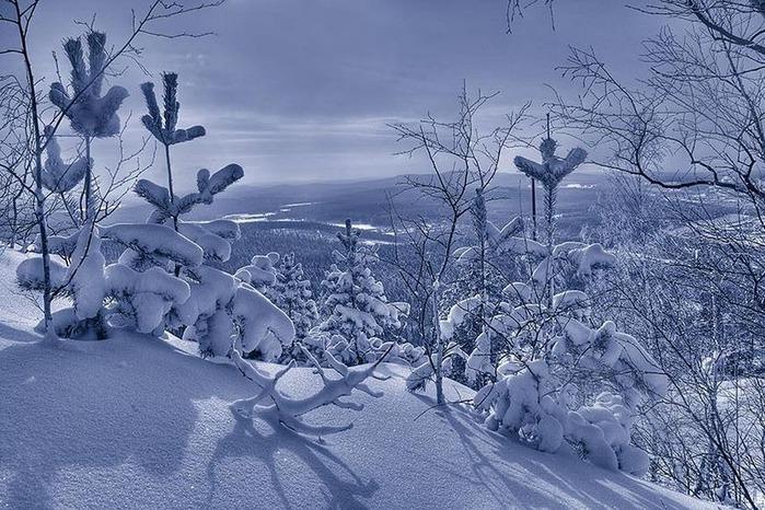 Вот и наступила зима 1