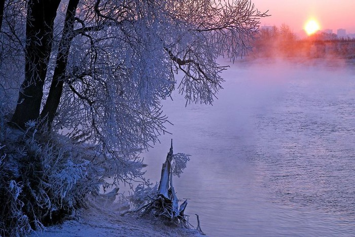 Вот и наступила зима 11