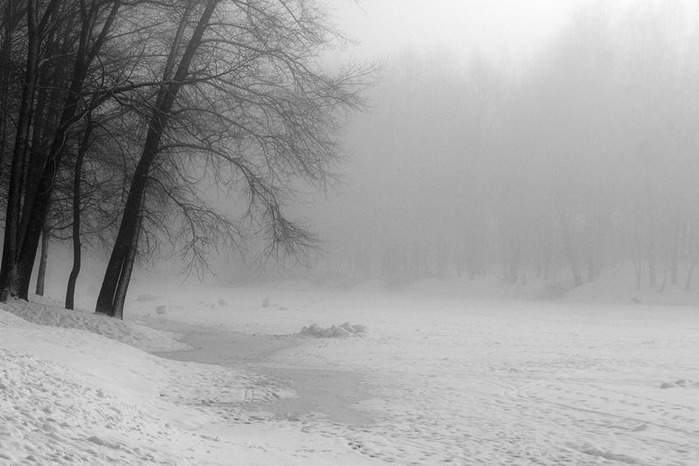 Вот и наступила зима 51