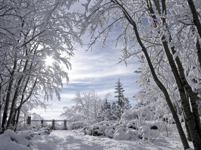 Вот и наступила зима 58