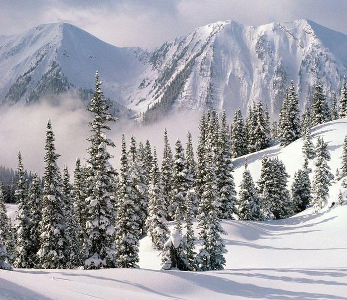 Вот и наступила зима 61
