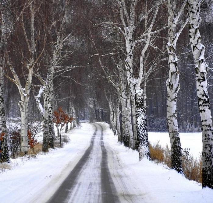 Вот и наступила зима 68