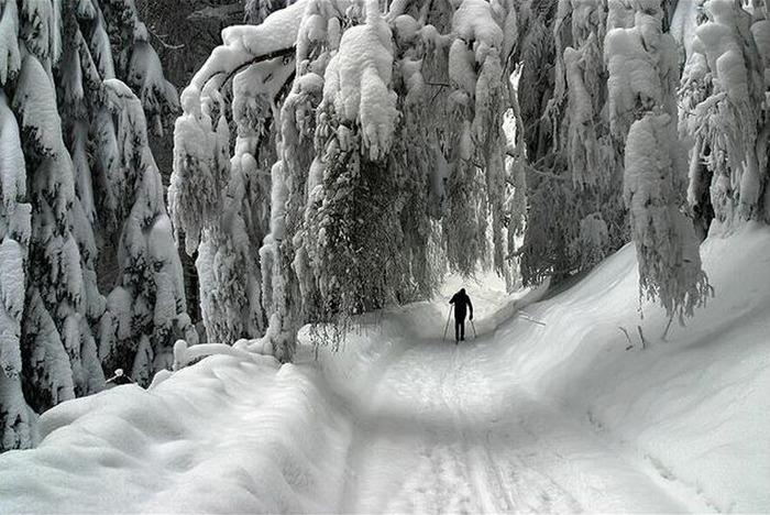 Вот и наступила зима 87