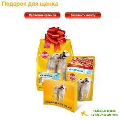 закажи подарок щенку