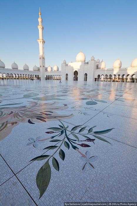 Мечеть шейха Зайда 9