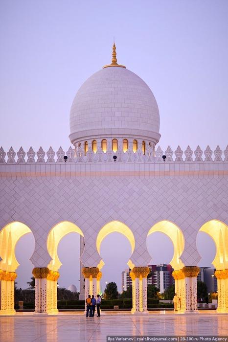 Мечеть шейха Зайда 43