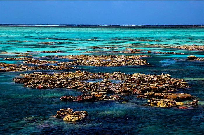 Восьмое чудо света - Большой Барьерный риф Австралии-Great Barrier Reef 99460