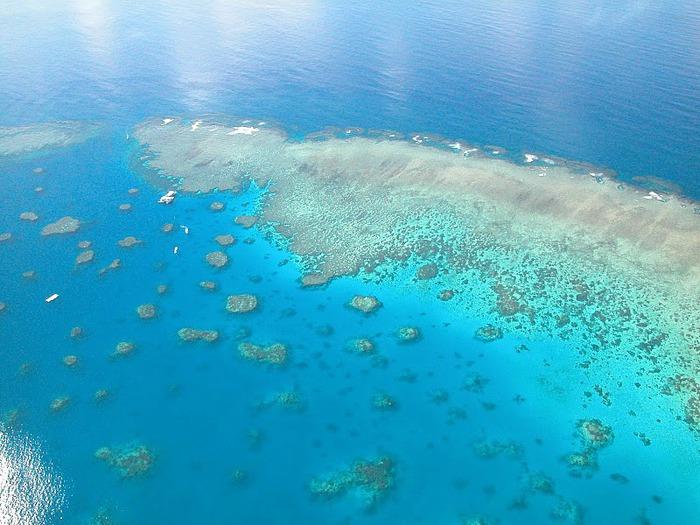 Восьмое чудо света - Большой Барьерный риф Австралии-Great Barrier Reef 22113