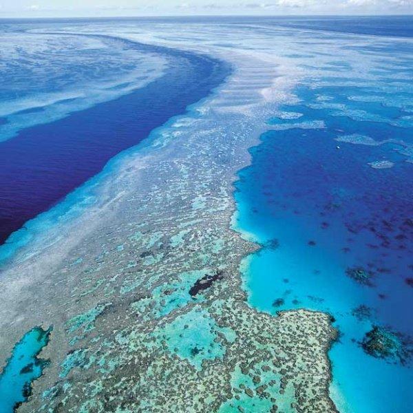 Восьмое чудо света - Большой Барьерный риф Австралии-Great Barrier Reef 92292