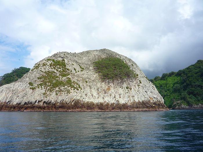 Остров Кокос 13738